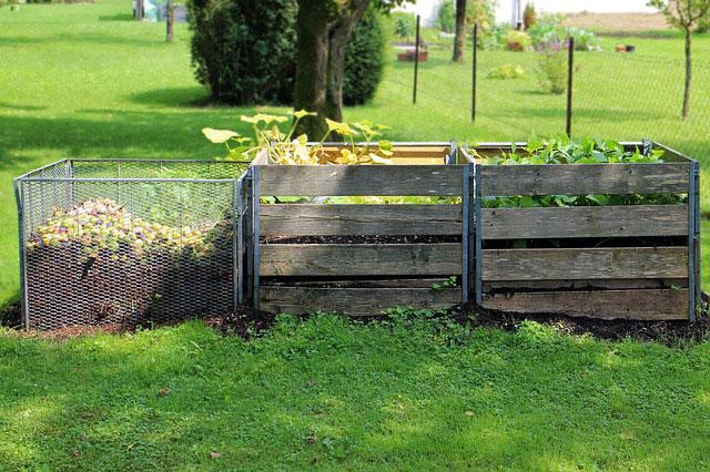 Kompost – jak i kiedy go przygotować?